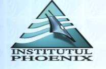 Institutul Postliceal Phoenix (IPP)